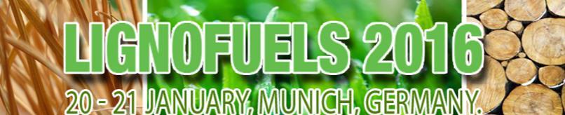 Lignofuels 2016